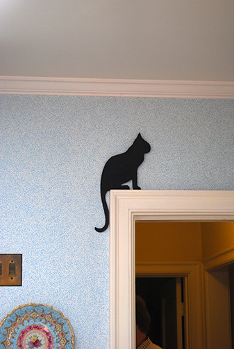 cat on door frame