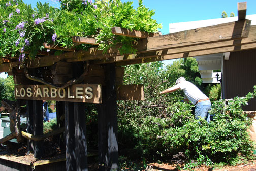 work on Los Arboles sign