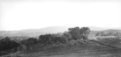 taken from the north 1932